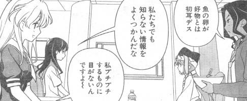 sakimote4.jpg